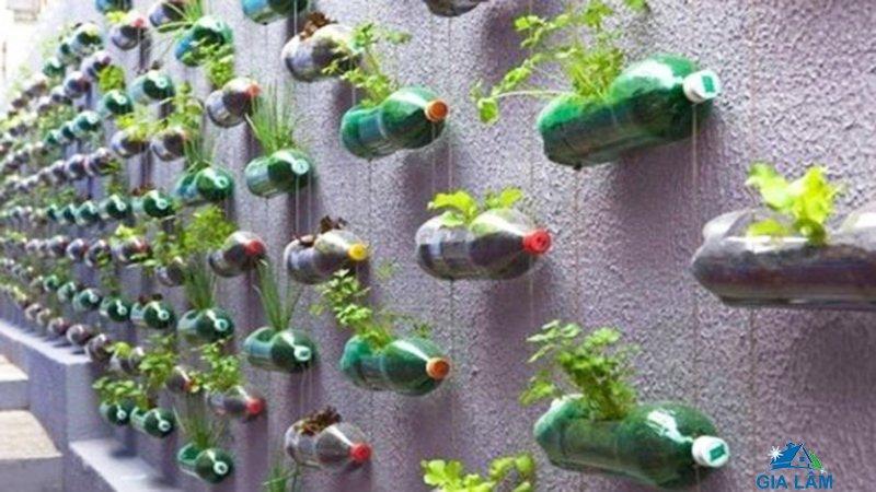 chế đồ trồng cây bằng nhựa
