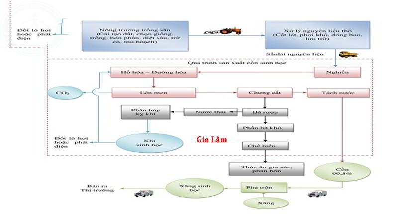 quy trình sàn xuất cồn công nghiệp